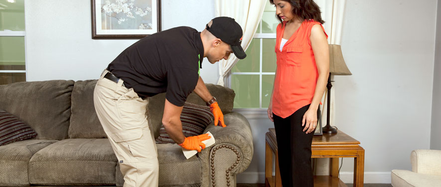 Oakdale, NY carpet upholstery cleaning